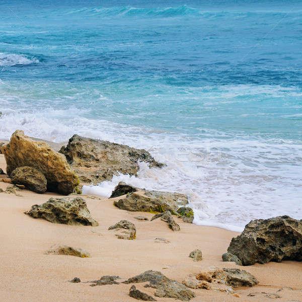 Pintoresco arenoso indio océano cielo Foto stock © alinamd