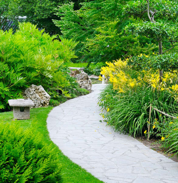 summer park with paths and flower beds Stock photo © alinamd