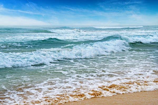 seascape, sand beach and blue sky Stock photo © alinamd