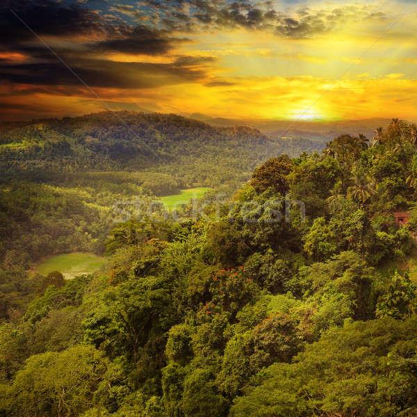 mountain landscape and sunrise Stock photo © alinamd
