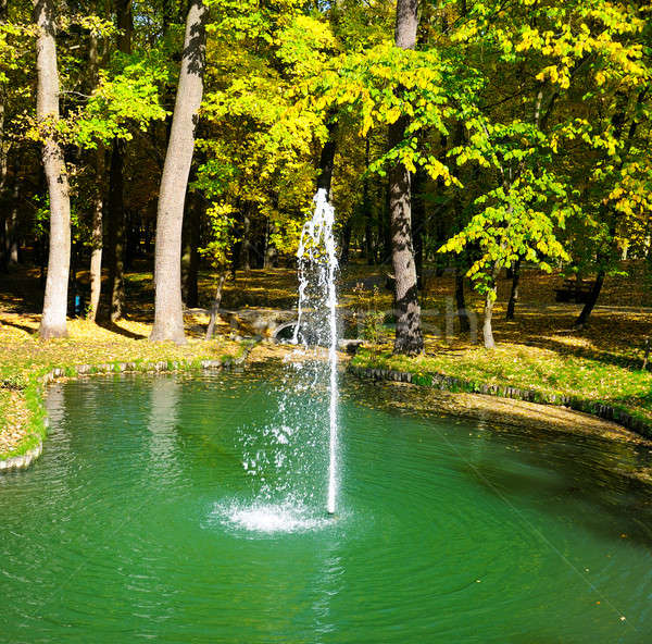 autumn park, a pond and a small fountain Stock photo © alinamd