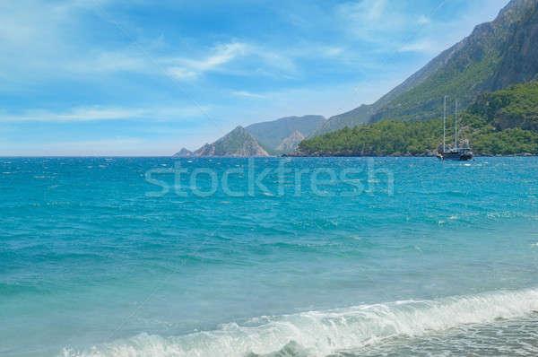seascape and the mountainous coast Stock photo © alinamd