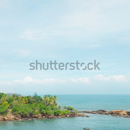 peninsula with tropical palm trees and waterscape Stock photo © alinamd