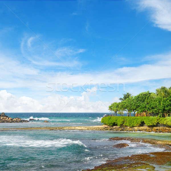 Stockfoto: Oceaan · pittoreske · strand · blauwe · hemel · zon · natuur
