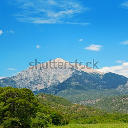 The top of the mountain Olympos against the blue sky Stock photo © alinamd