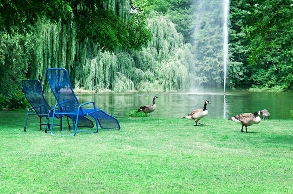 park with a picturesque lake and recreation areas Stock photo © alinamd