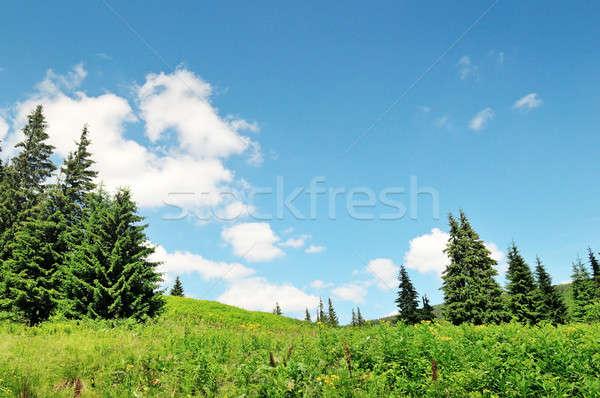 scenic mountain peaks against the blue sky Stock photo © alinamd