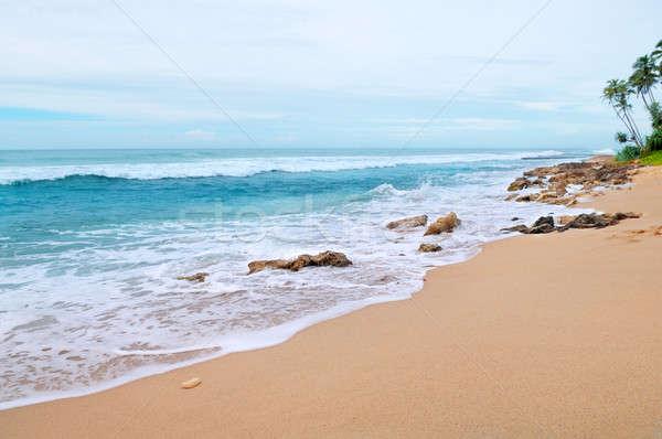 seascape Stock photo © alinamd