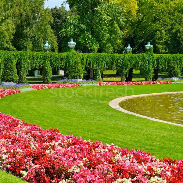 Nyár park virágágy zöld gyep égbolt Stock fotó © alinamd