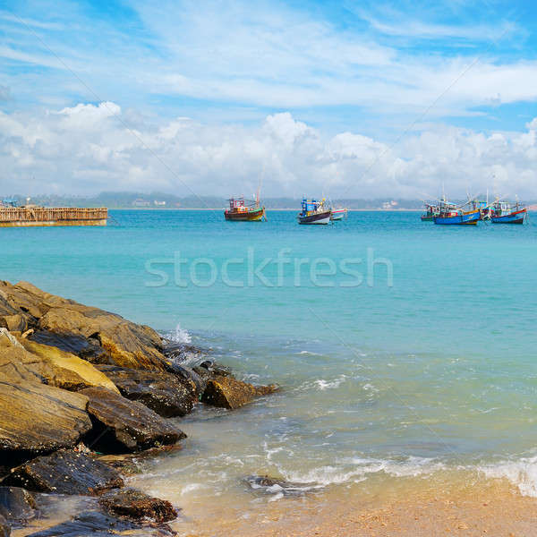 beautiful seascape with fishing boats on the water Stock photo © alinamd