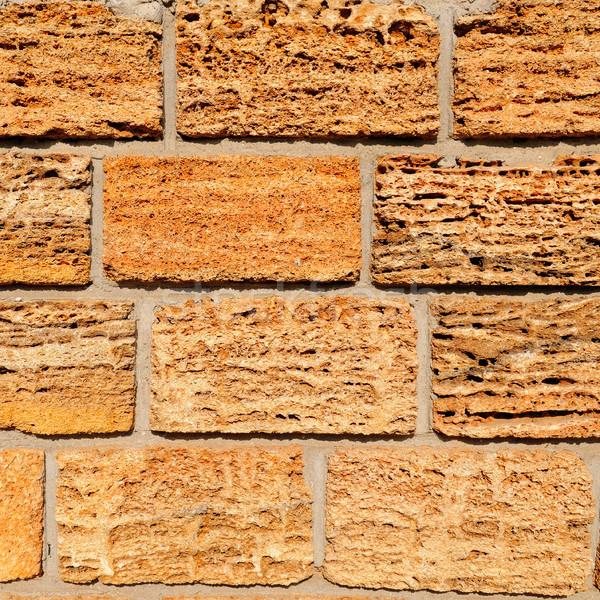 Vág kagyló kő részlet ház fal Stock fotó © alinamd