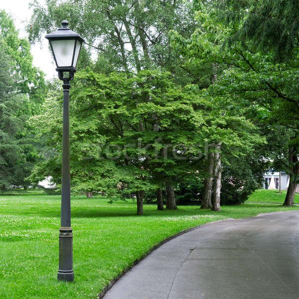 flashlight to illuminate the park Stock photo © alinamd