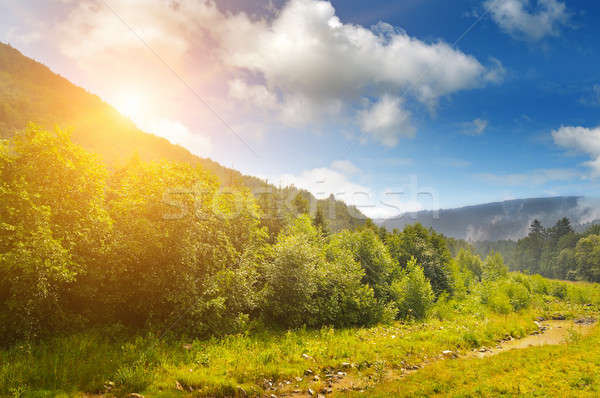 sunrise over the mountainside Stock photo © alinamd