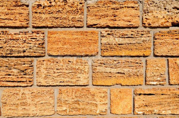 Cortar concha rocha pormenor casa parede Foto stock © alinamd