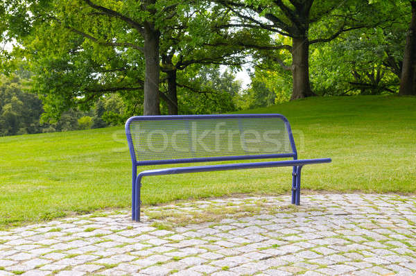 bench in a summer park Stock photo © alinamd
