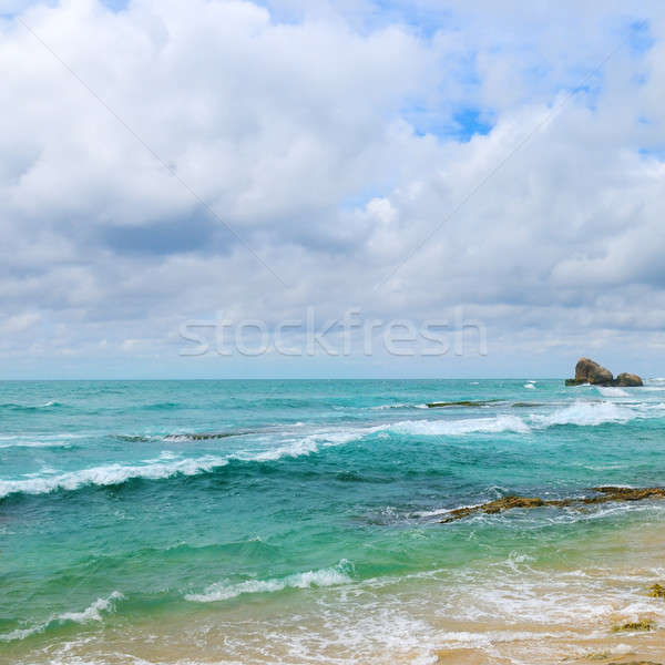 ocean, picturesque beach and blue sky Stock photo © alinamd