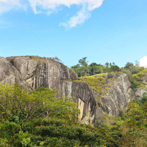 mountains and blue sky in Sri Lanka Stock photo © alinamd