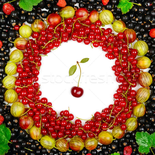 background of red and black currants, gooseberries, raspberries Stock photo © alinamd