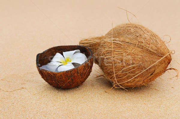 coconut and magnolia flower on a background of a sandy beach Stock photo © alinamd