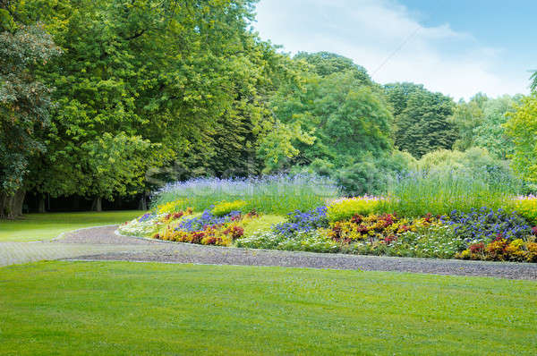 summer park with beautiful flowerbeds Stock photo © alinamd