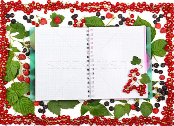 book on the background of currant berries, blackberries and rasp Stock photo © alinamd