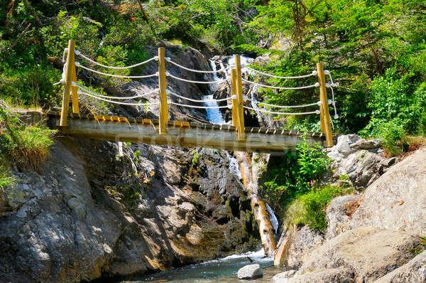 Stok fotoğraf: Köprü · dağ · nehir · banka · orman · arka · plan