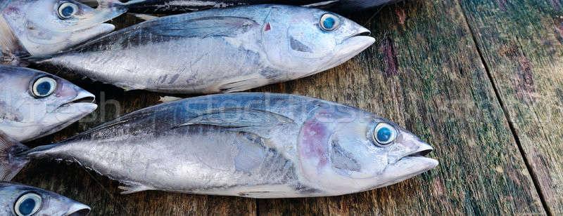 Vis houten tonijn water hout zee Stockfoto © alinamd
