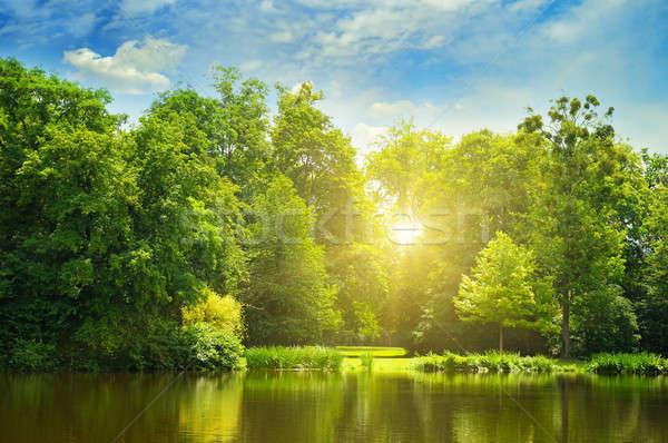 Resmedilmeye değer göl yaz orman bankalar gündoğumu Stok fotoğraf © alinamd