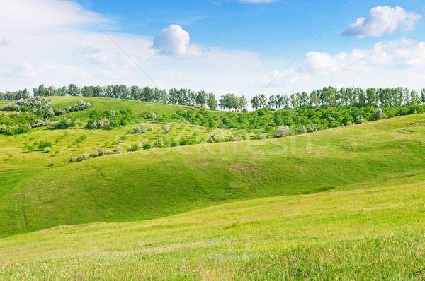 Stock fotó: Terep · kék · ég · tavasz · fű · természet · tájkép