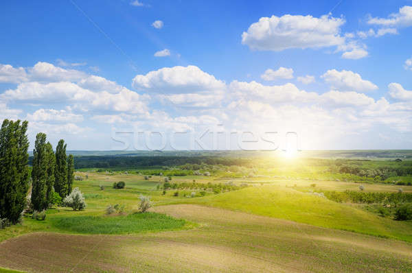 hilly terrain, spring field and sunrise on blue sky Stock photo © alinamd