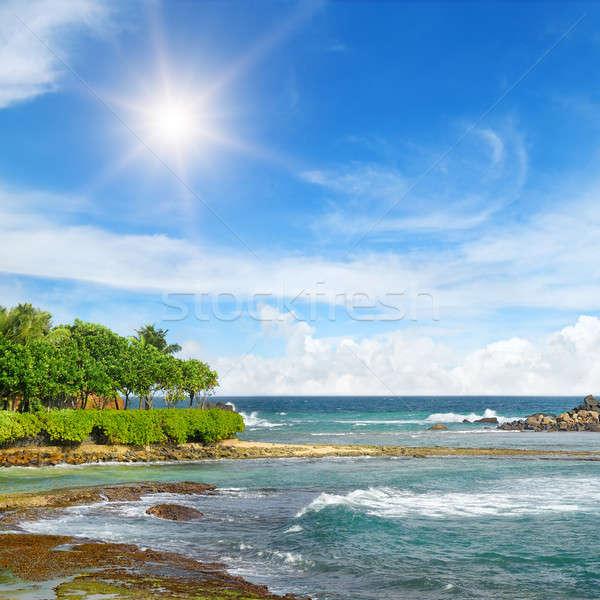 海 絵のように美しい ビーチ 青空 太陽 自然 ストックフォト © alinamd
