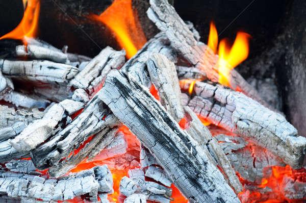Falò fuoco legno carbone cenere texture Foto d'archivio © alinamd