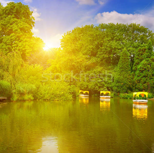 picturesque lake and pleasure boats Stock photo © alinamd