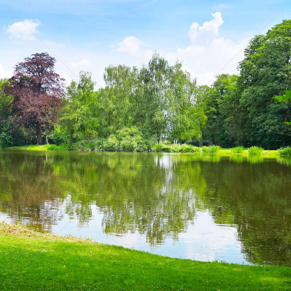 lake in the summer park Stock photo © alinamd