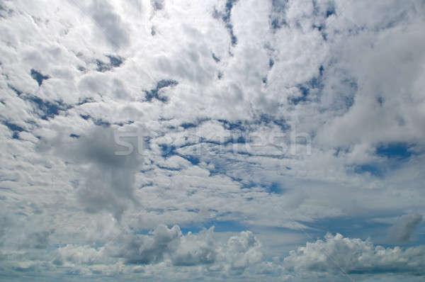 Abstract light gray overcast sky Stock photo © alinamd