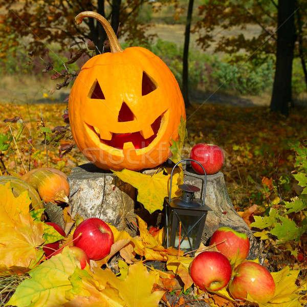Zdjęcia stock: Jesienią · lasu · drzewo · uśmiech · jabłko · owoców