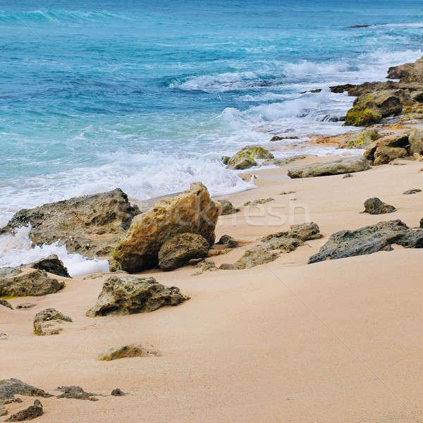 picturesque sandy coastline Stock photo © alinamd