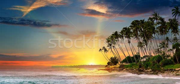 Fantastisch zonsopgang oceaan hemel water boom Stockfoto © alinamd