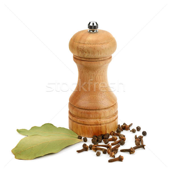 grinder and spices isolated on white background Stock photo © alinamd