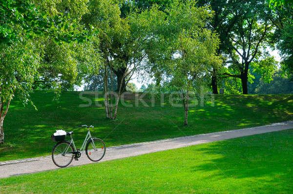 Foto stock: Verão · parque · bicicleta · bicicleta · caminho · céu