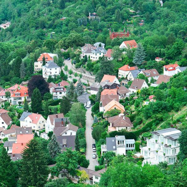 Miejskich krajobraz lesie widok z góry lasu lata Zdjęcia stock © alinamd