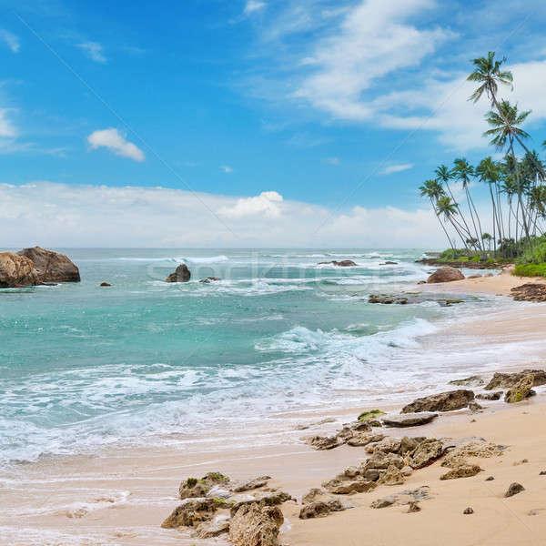 海 絵のように美しい ビーチ 青空 空 水 ストックフォト © alinamd