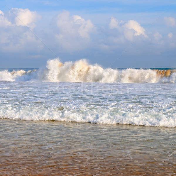 海 砂浜 青空 雲 太陽 自然 ストックフォト © alinamd