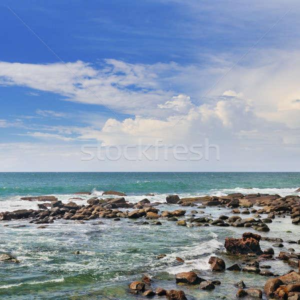 Festői óceán korallzátony part kék ég nap Stock fotó © alinamd