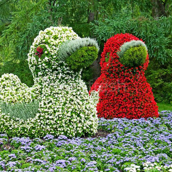 Клумба форма весны трава пейзаж саду Сток-фото © alinamd