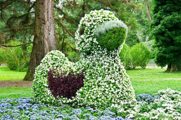 花壇 公園 カモ ツリー 草 ストックフォト © alinamd