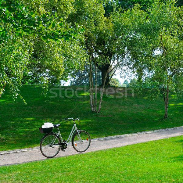 Summer park, bike and bicycle path Stock photo © alinamd