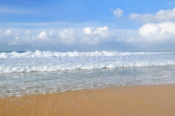 Homokos tengerpart kék ég óceán tengerpart víz nap Stock fotó © alinamd