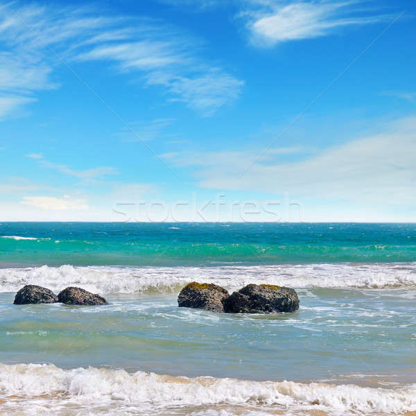 海 絵のように美しい ビーチ 青空 雲 海 ストックフォト © alinamd