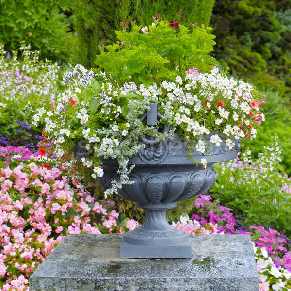 flower bed and stone vase with flowers Stock photo © alinamd